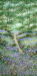 Bluebell Wood by Mary Shaw - Original Painting on Board sized 16x32 inches. Available from Whitewall Galleries